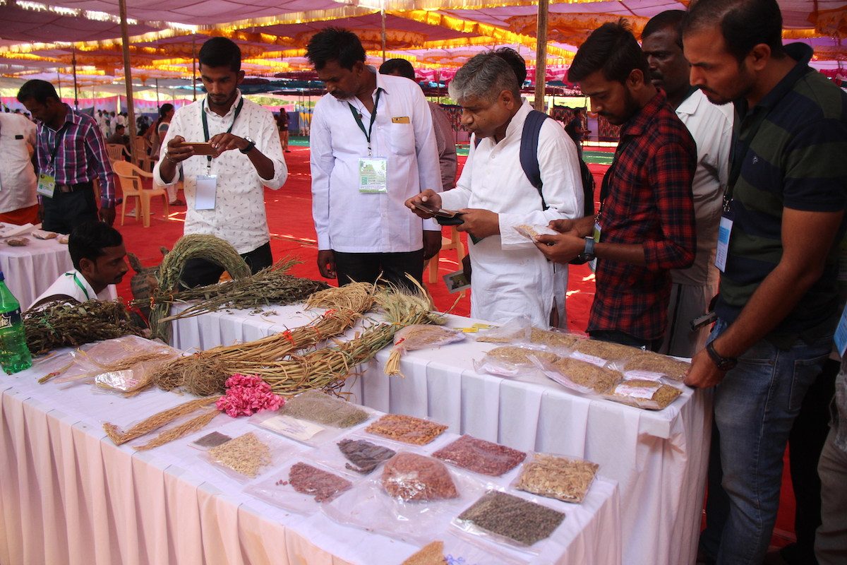 Beej Mahotsav organized To Connect Farmers And Exchange Knowledge About Desi Seed Varieties And How Growing It Can Be A Viable Busines