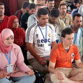 Spotlight - Peace Initiatives